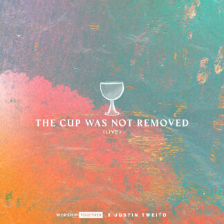 The Cup Was Not Removed (Live)