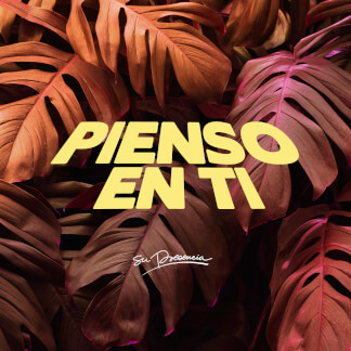 Pienso en Ti
