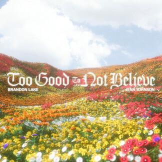 Too Good To Not Believe (Radio Version)