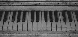 Enfocada en Piano