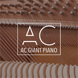 AC Giant Piano Anthony Catacoli