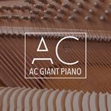 AC Giant Piano Anthony Catacoli