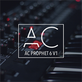 AC Prophet 6 V1 Anthony Catacoli