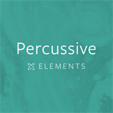 Percussive Elements Will Doggett
