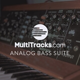 Analog Bass Suite MultiTracks.com