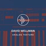 Analog Texture David Wellman