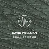 Organic Texture David Wellman