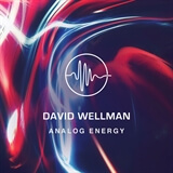 Analog Energy  David Wellman