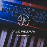 Analog 60 David Wellman