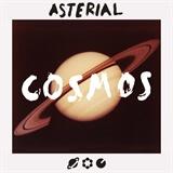 Cosmos Bottega