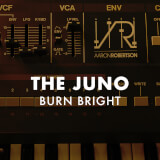 The Juno: Burn Bright Aaron Robertson
