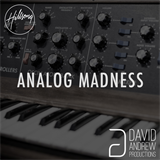 Analog Madness 1 David Andrew