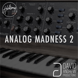 Analog Madness 2 David Andrew