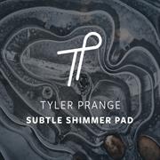 Subtle Shimmer Pad