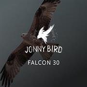 Falcon 30
