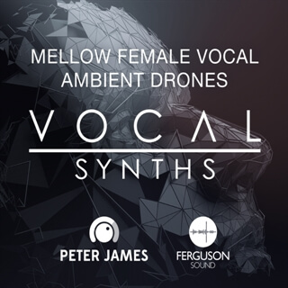 Mellow Female Vocal Ambient Drones