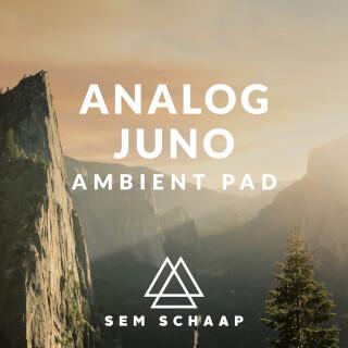 Analog Juno Ambient Pad