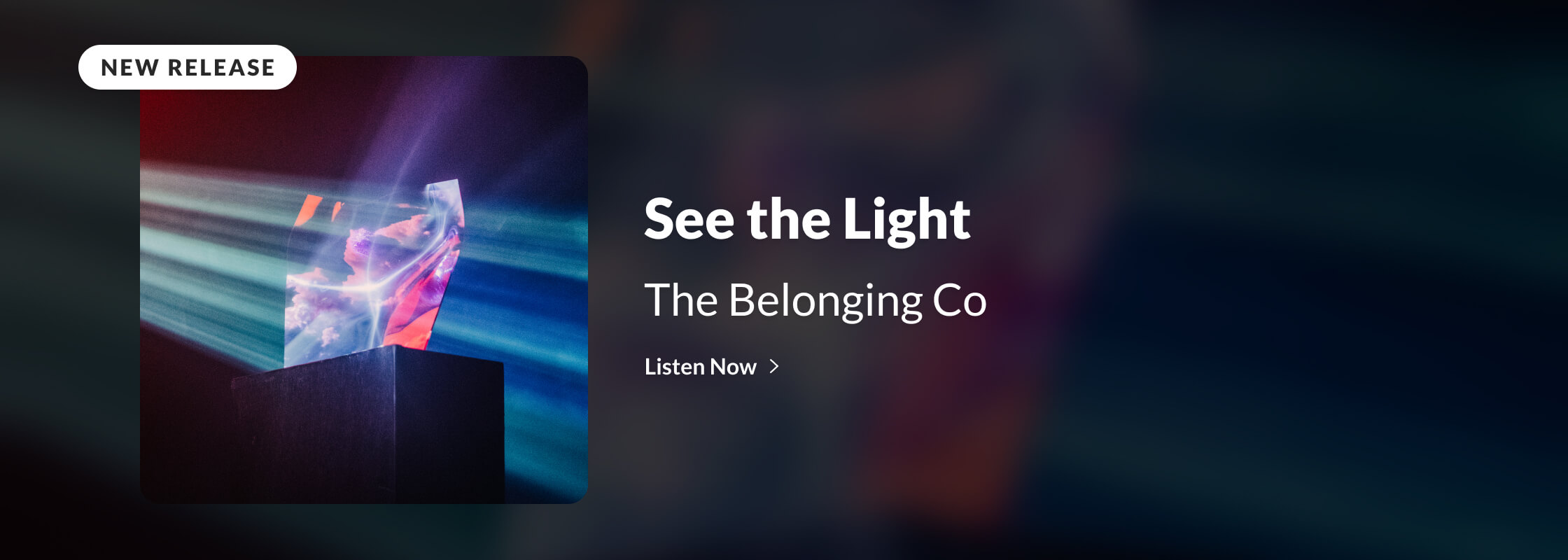 The Belonging Co | See the Light