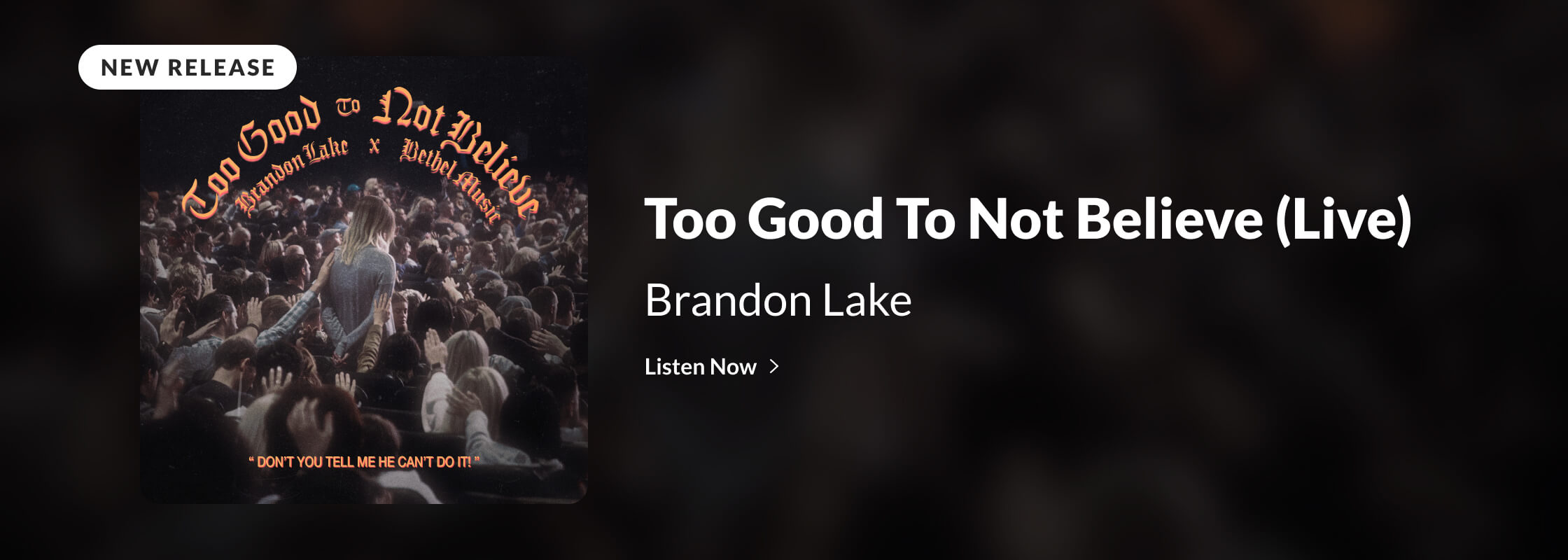 Brandon Lake | Too Good To Not Believe (Live)